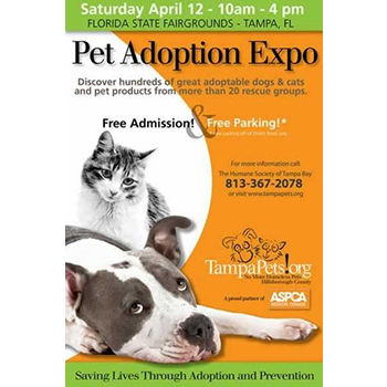 Pet Adoption Expo